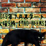TWO WEEKS日本版あらすじとキャストまとめ!見どころは?