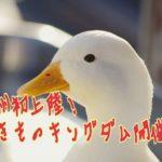 九州初上陸!いきものキングダムは危険な動物園?期間や料金は?